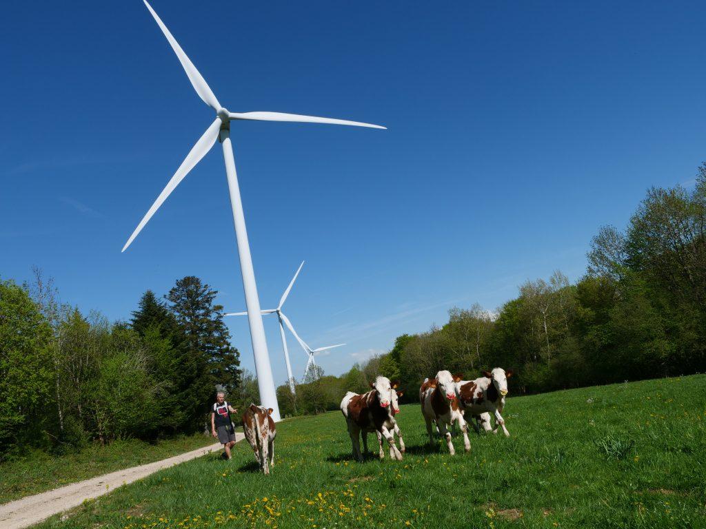 Site éolien du Lomont